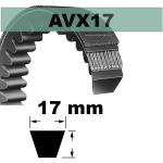 AVX17x1000