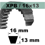 XPB1455 MAXIMUM