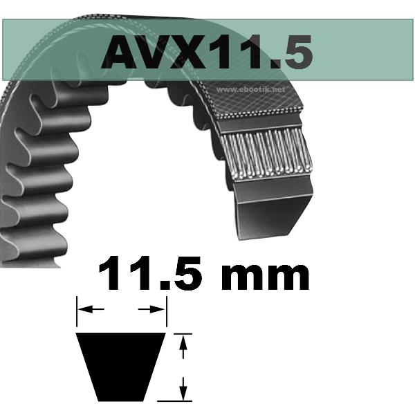 COURROIE AVX11,5x730 mm La/Le