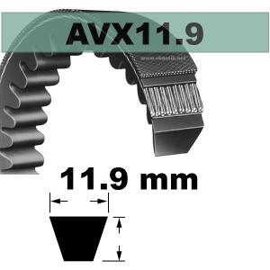 COURROIE AVX11,9x670 mm La/Le