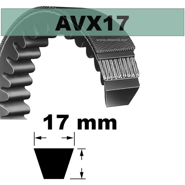 COURROIE AVX17x875 mm La/Le