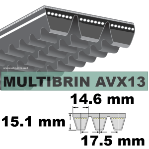 COURROIE 2xAVX13x1475 mm La/Le