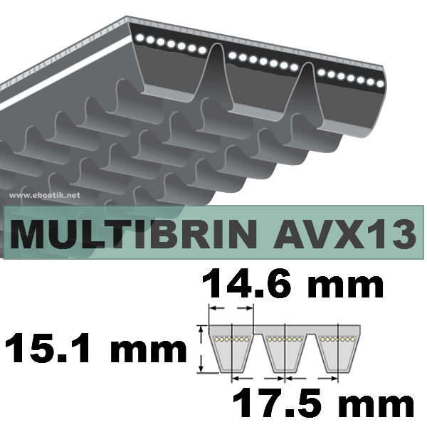 COURROIE 2xAVX13x1575 mm La/Le