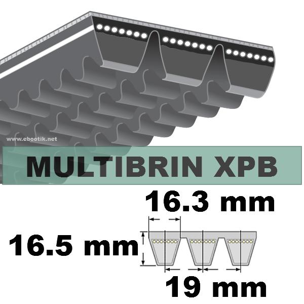 COURROIE 2xXPB1650 mm Lp